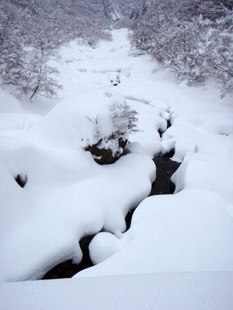 冬の佐陀川