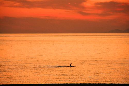 夕方の瀬戸内海
