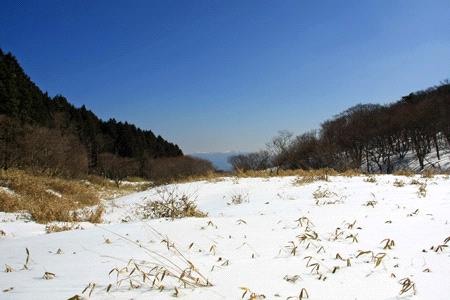 雪の皿ヶ嶺竜神平