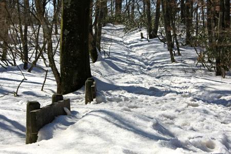 雪の皿ヶ嶺のベンチ