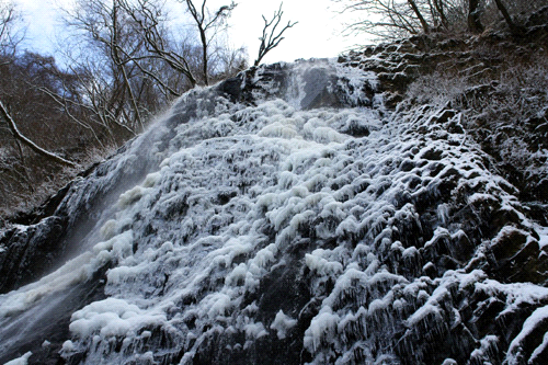 冬の白猪の滝