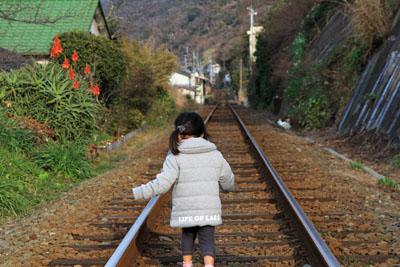 日本水仙花開道へ渡る線路