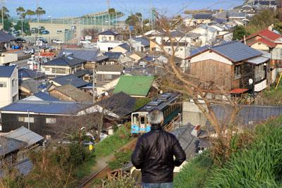 日本水仙花開道線路横断