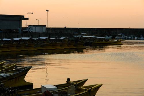 夕方の双海の漁港