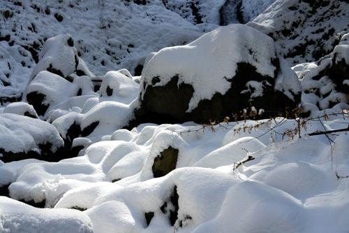 白猪の滝の川