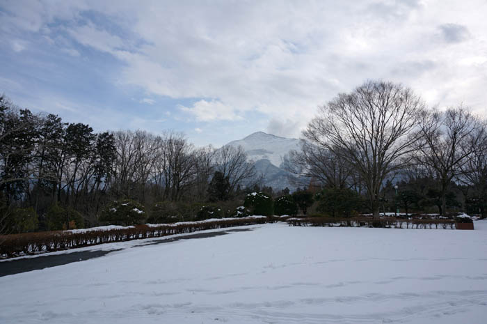 冬の羊山公園