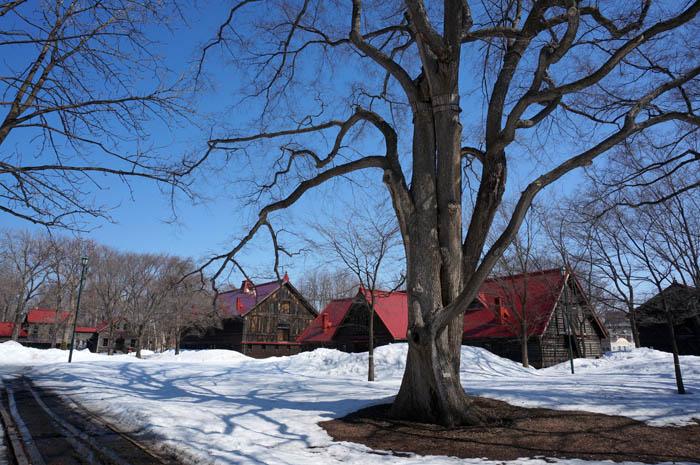 冬の札幌農学校第二農場