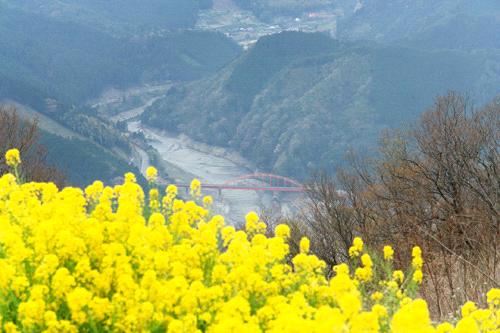 翠波高原からの金砂湖