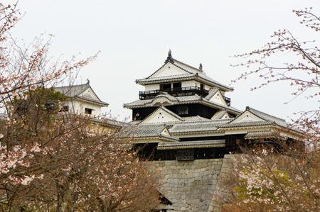 春の松山城
