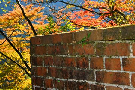 遠登志渓谷の紅葉