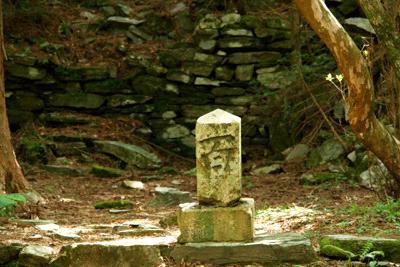 目出度町の大山祇神社跡