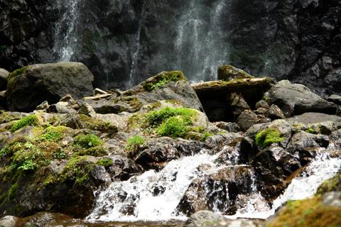 白猪の滝滝つぼ