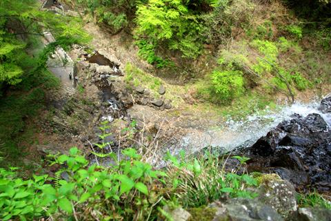 白猪の滝の上