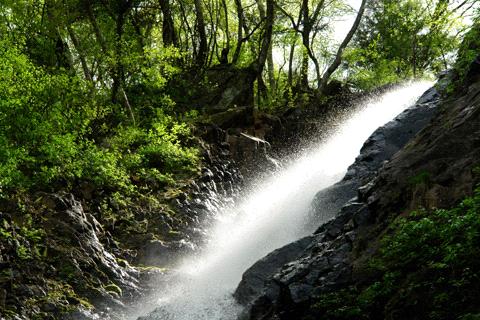 白猪の滝上段の滝