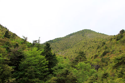 別子銅山西山
