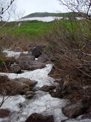 白馬乗鞍岳夏の登山道
