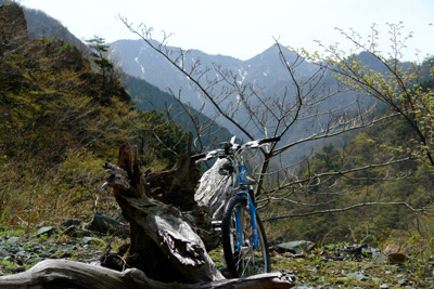 高瀑への林道