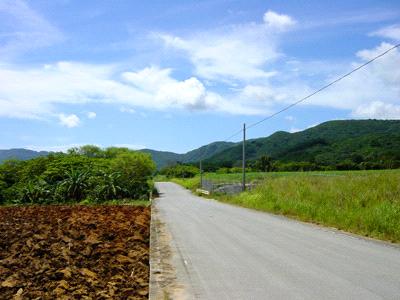 西表島の道