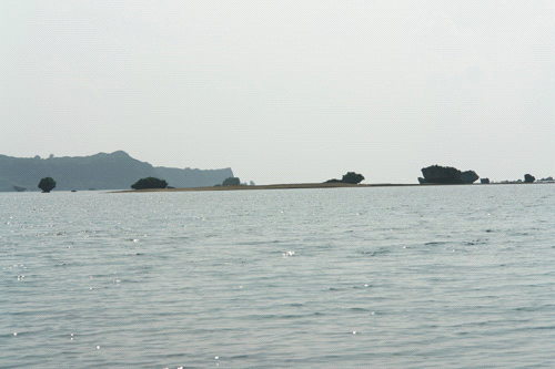 浜比嘉大橋の海