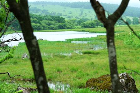 八島ヶ原湿原鎌ヶ池