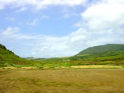 与那国島の牧場