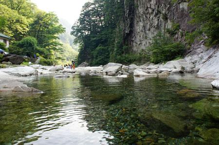 面河渓川遊び