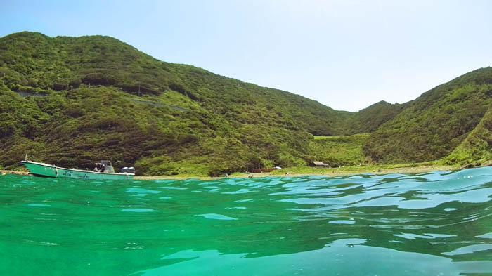 竜ヶ浜ダイビング