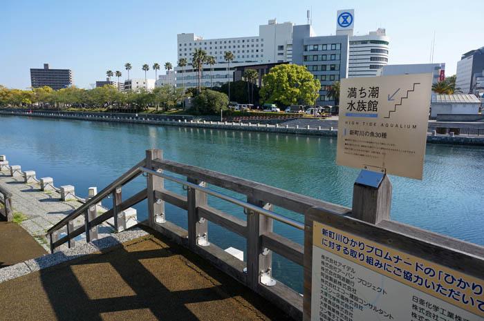 満ち潮水族館入口