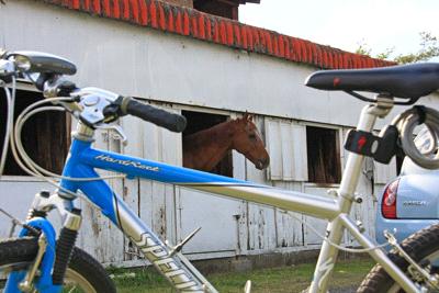 MRC乗馬クラブ