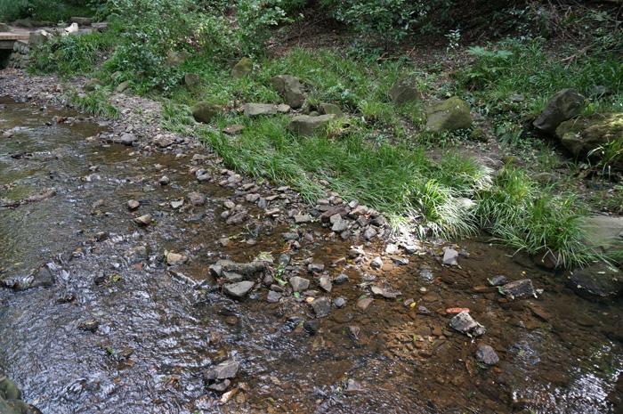 等々力渓谷の河原