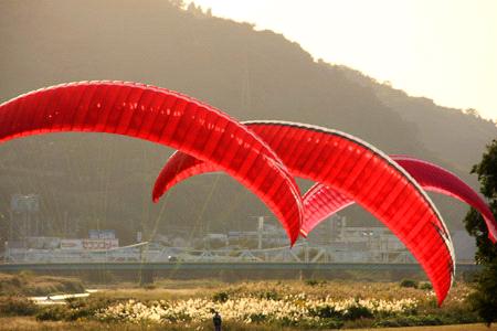 重信川のパラグライダー