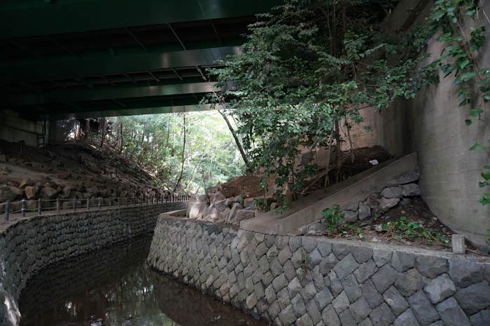 等々力渓谷と玉沢橋