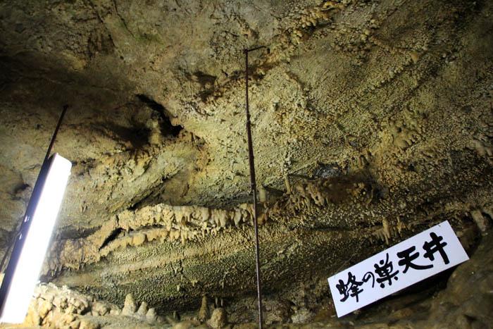 大滝鍾乳洞蜂の巣天井