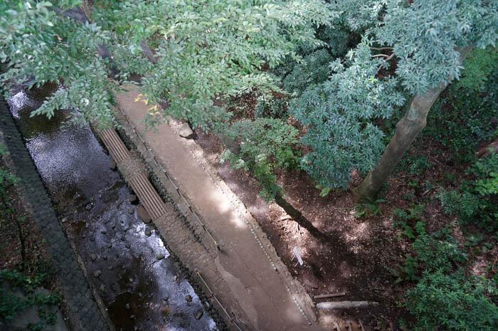 玉沢橋からの等々力渓谷