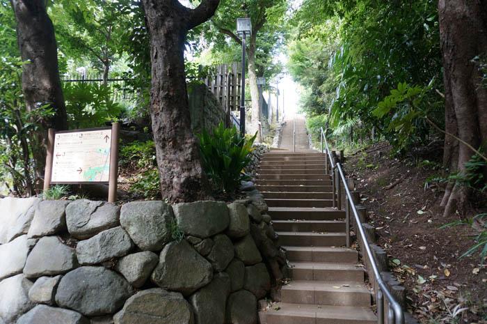 等々力渓谷階段