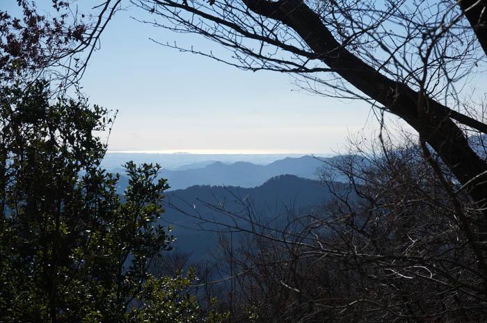 高尾山からの相模湾