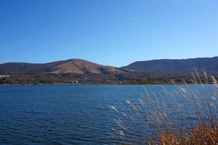 秋の山中湖