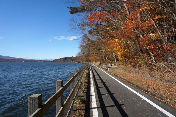 紅葉の山中湖サイクリング