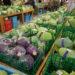 六甲のめぐみ【神戸の野菜や肉が安い人気の直売所】